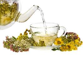 Herbal tea anti parasite - proti parazitů - účinky - složení - forum