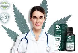 Cbd kanabialica – lékárna – účinky – kde koupit
