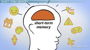 Neurocyclin – lékárna – účinky – kde koupit