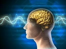Neurocyclin - pro lepší paměť – recenze – forum – cena