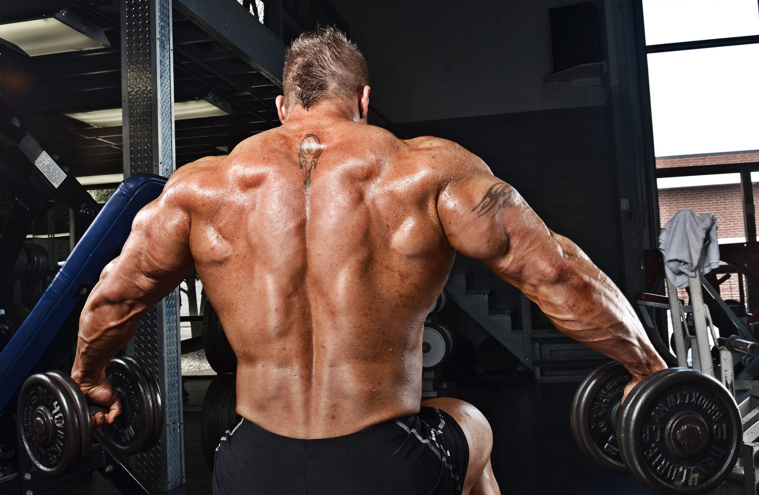 Amarok - na svalovou hmotu - jak používat - akční - výrobce