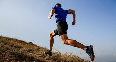 Daglig motion och rörelse och näring-två faktorer eller två sidor av samma mynt?