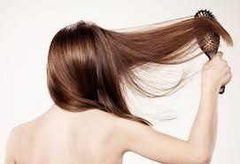 Chevelo Shampoo - ervaringen - review - forum - Nederland