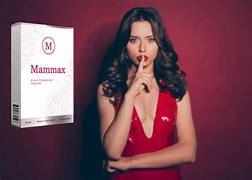 Mammax - no farmacia - no Celeiro - em Infarmed - no site do fabricante? - onde comprar